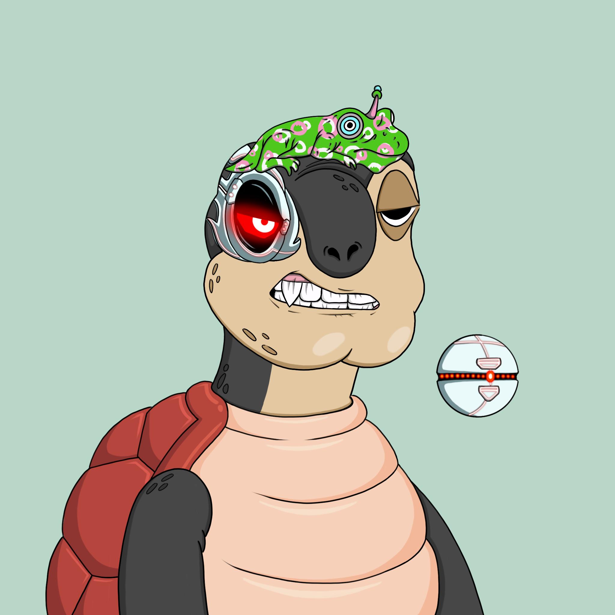 Toasy Turts #3119
